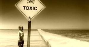 Detectan restos tóxicos de plaguicidas en alimentos